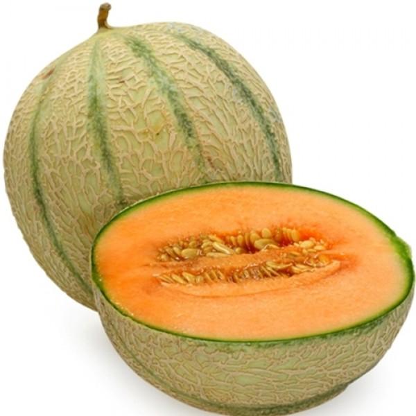 Cantaloupe 15ml